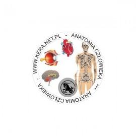 855 Anatomia człowieka