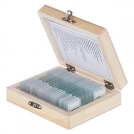 2546 Gady i ptaki – zestaw 10 prep. mikroskopowych
