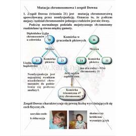 055 Mutacja chromosomowa i zespół Downa