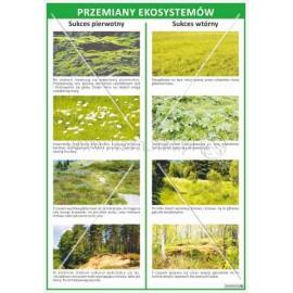 116 Przemiany ekosystemów