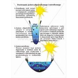 215 Porównanie jeziora oligotroficznego i eutroficznego
