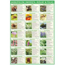 235 Niebezpieczne zwierzęta i rośliny w Polsce