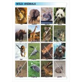 349 Dzikie zwierzęta