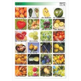 358 Owoce