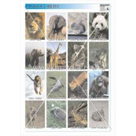406 Dzikie zwierzęta