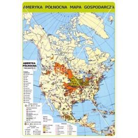 460 Ameryka Północna - Mapa gospodarcza