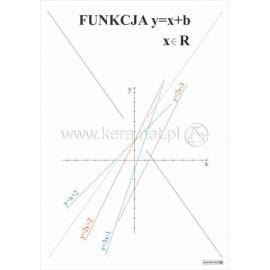 489 Funkcja y x+b