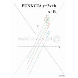 491 Funkcja y 2x+b
