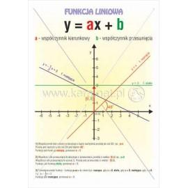 503 Funkcja liniowa