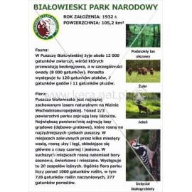 538 Białowieski Park Narodowy