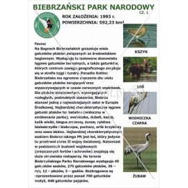 539 Biebrzański Park Narodowy cz. 1