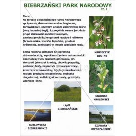 540 Biebrzański Park Narodowy cz. 2