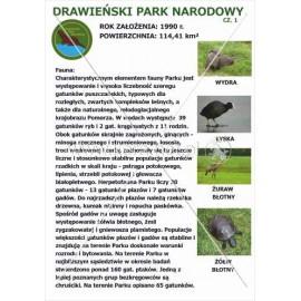 542 Drawieński Park Narodowy cz. 1