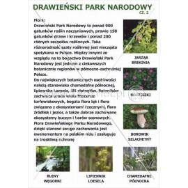 543 Drawieński Park Narodowy cz. 2