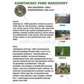546 Kampinoski Park Narodowy