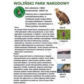 548 Woliński Park Narodowy