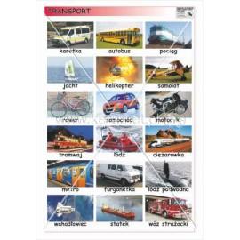 628 Transport