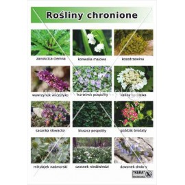 654 Rośliny chronione cz.1