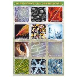 162 Świat widziany pod mikroskopem cz. 2