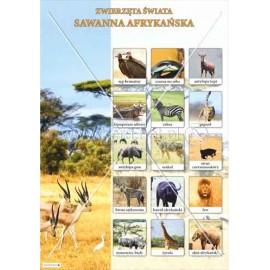 1333 Sawanna Afrykańska