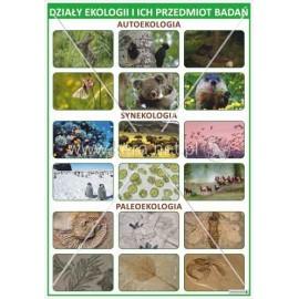 2360 Działy ekologii i ich przedmiot badań