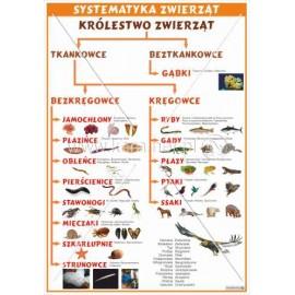 2454 Systematyka zwierząt