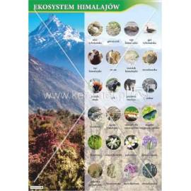3061 Ekosystem Himalajów
