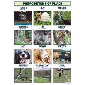 3079 Prepositions of place