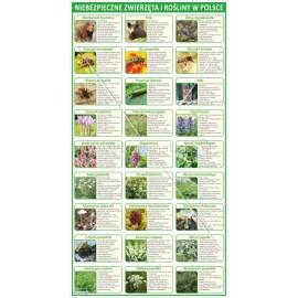 3204 Niebezpieczne zwierzęta i rośliny w Polsce