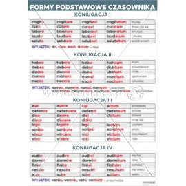 3319 Formy podstawowe czasownika